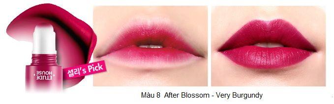 Rosy Tint Lips – Son kem Etude House lên màu cực chuẩn 9