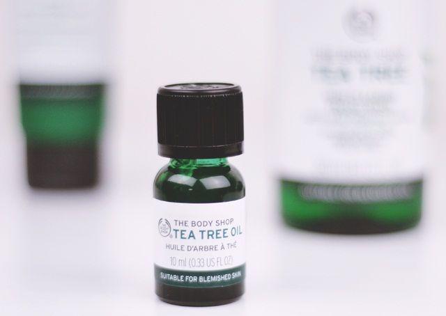 Tinh dầu tràm trà Tea Tree Oil kháng khuẩn, ngăn ngừa và điều trị mụn hiệu quả