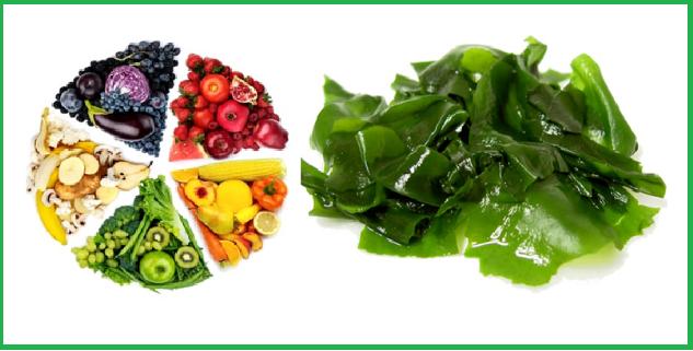 Nature's Way Multivitamin Spirulina là sự kết hợp tuyệt vời giữa các vitamin và tảo Spirulina