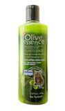 Sữa tắm Olive Essence dành riêng cho mèo