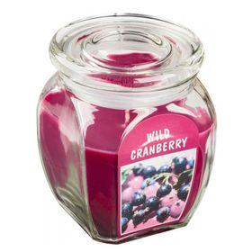 Hũ nến thơm tinh dầu Bolsius 305g QT024365  hương việt quất