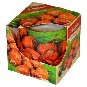 Ly nến thơm tinh dầu Admit 100g QT04534 hương hạt phỉ