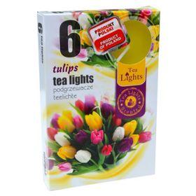 Hộp 6 nến thơm tinh dầu Tealight QT026054 hương hoa tulips