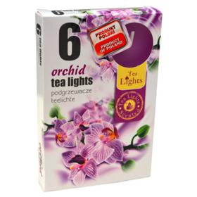Hộp 6 nến thơm tinh dầu Tealight QT026069 lan hồ điệp