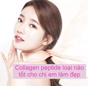 [TIPS] Collagen peptide là gì? Loại nào tốt cho chị em làm đẹp?