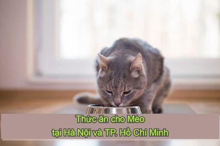 Thức ăn cho Mèo tại Hà Nội và TP. Hồ Chí Minh