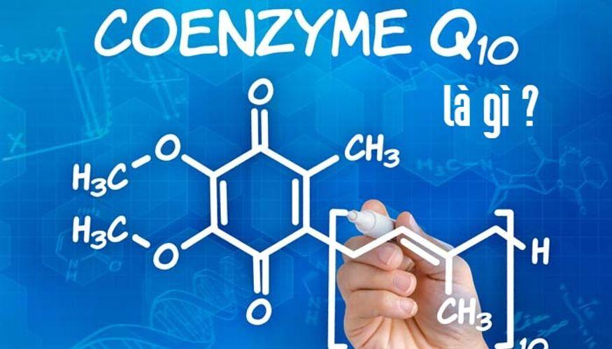 [GIẢI ĐÁP] Tất tần tật về Coenzyme Q10 là gì ? Khả năng chống oxy hóa trong cơ thể là có thật?