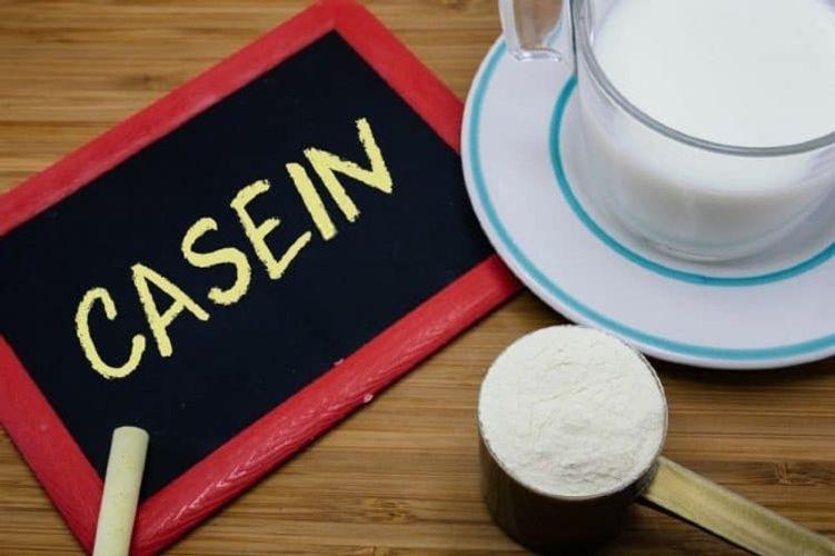 Casein là gì? TOP sản phẩm bổ sung casein tối ưu không thể bỏ qua