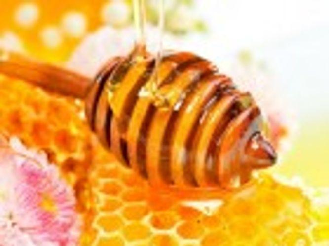 Những điều cần biết về sữa ong chúa