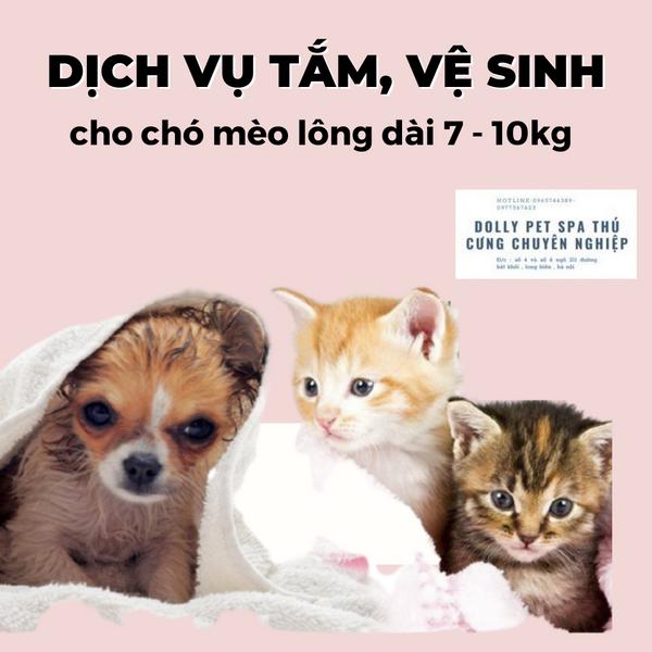 Voucher Tắm Vệ Sinh Trọn Gói Cho Chó Mèo Lông Dài 7 Tới 10kg