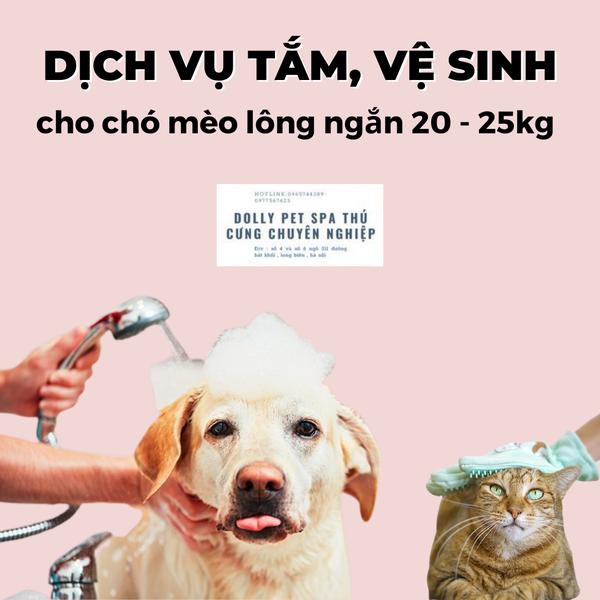 Voucher Tắm, Vệ Sinh Trọn Gói Chó Mèo Lông Ngắn 20 Đến 25kg