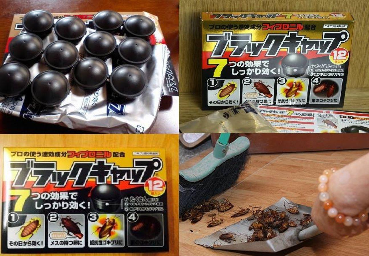 Viên Diệt Gián Của Nhật Bản 12 Viên