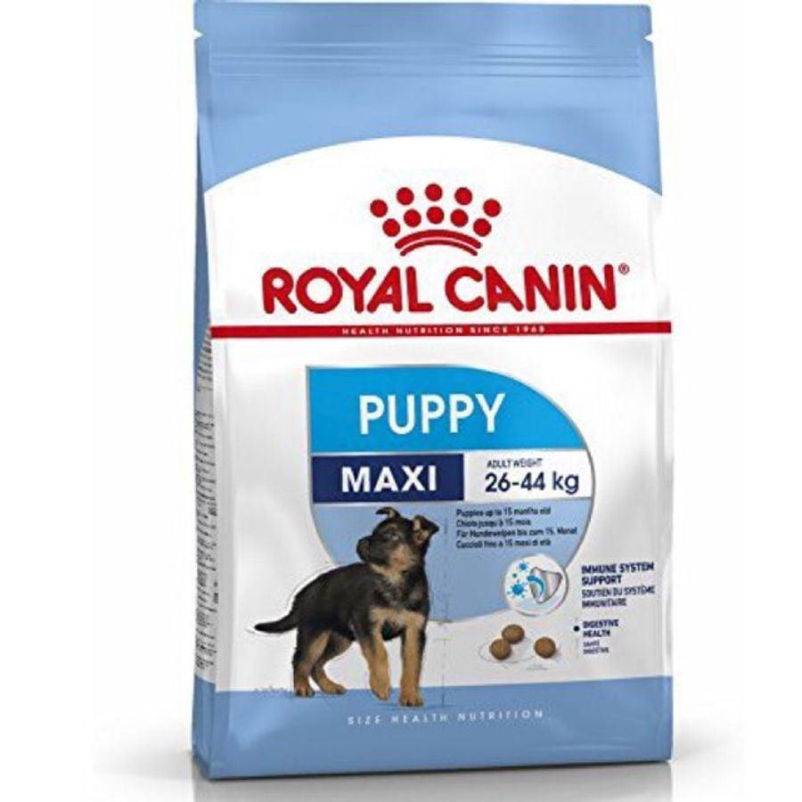 [SIÊU KHUYẾN MÃI]- Combo 1 Thức Ăn Hạt Royal Canin 1kg Và 1 Pate 140g Cho Chó Medium Adult
