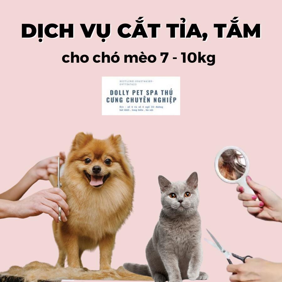 Voucher Cắt Tỉa Và Tắm Vệ Sinh Trọn Gói Cho Chó Mèo 7 Đến 10kg