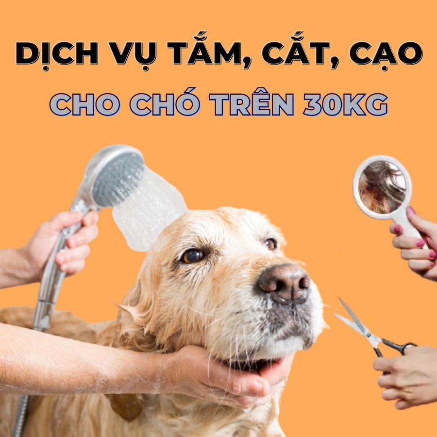 Voucher Dịch Vụ Tắm Cắt Cạo Lông Cho Chó Trên 30kg