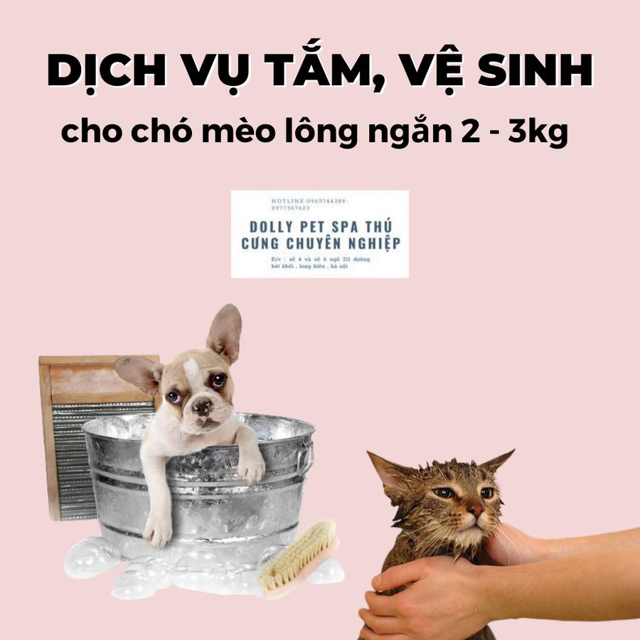 Voucher Tắm Và Vệ Sinh Trọn Gói Cho Chó Mèo Lông Ngắn 2 – 3kg
