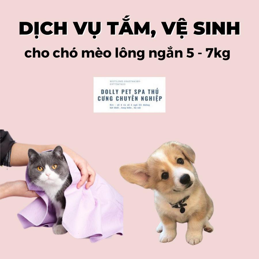 Voucher Tắm Vệ Sinh Trọn Gói Cho Chó Mèo Lông Ngắn 5 Đến 7kg