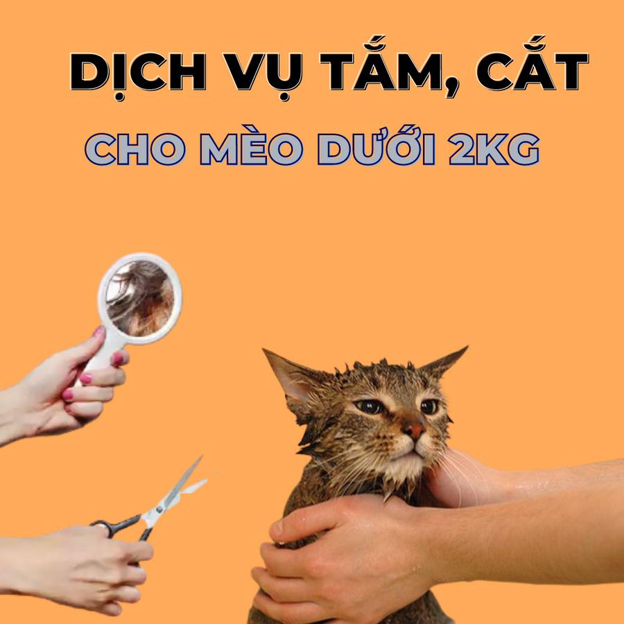 Voucher Dịch Vụ Tắm Cắt Cho Mèo Dưới 2kg