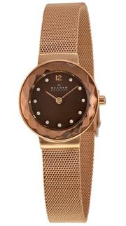 Đồng hồ Skagen 456SRR1 sang trọng dành cho nữ