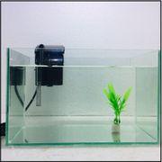 Bể cá kính thường 30x17x20 cm, dày 5mm