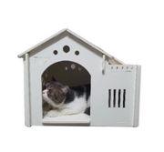 Nhà gỗ nhựa để ngoài trời cho chó mèo từ 0 - 5kg