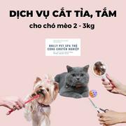 Voucher cắt tỉa và tắm trọn gói cho chó mèo từ 2 đến 3kg