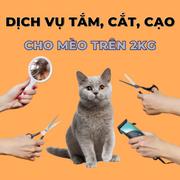 Voucher dịch vụ tắm cắt cạo mèo trên 2kg