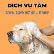 Voucher dịch vụ tắm cho chó từ 21 đến 30kg chuyên nghiệp