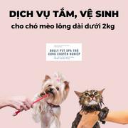 Voucher tắm và vệ sinh trọn gói cho chó mèo lông dài dưới 2kg