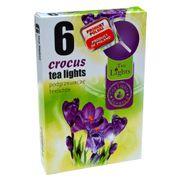 Hộp 6 nến thơm tinh dầu Tealight QT026104 hoa nghệ tây